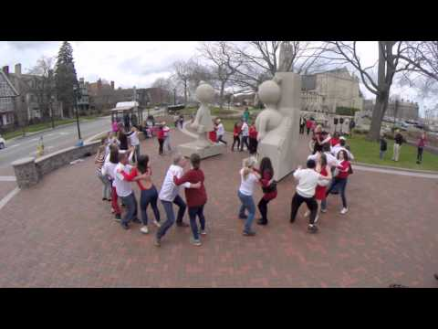 Flash Mob at Memorial Art Gallery Sculpture Park, Rochester, New York, United States