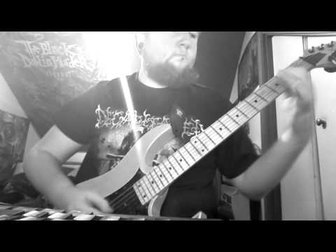 Human Mycosis - VRL (Guitar Cover)