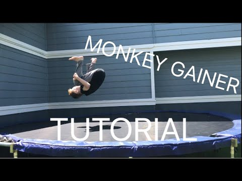 Tutorial: How To Monkey Gainer-Kong Gainer