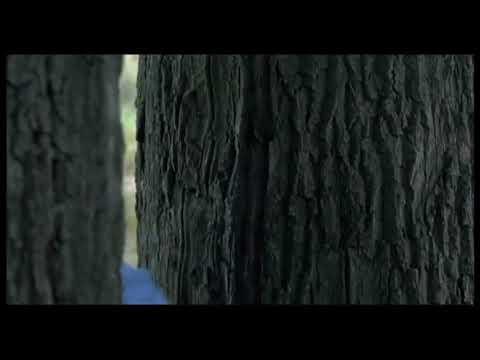 видео голая ирина цывина выдохе туловище наклонить