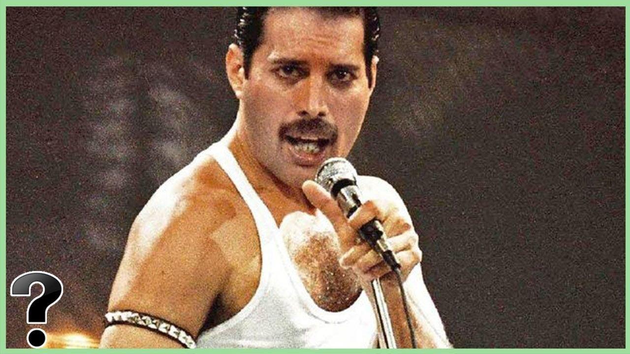 The Last 6 Years Of Freddie Mercury - YouTube |Last Picture Of Freddie Mercury Alive