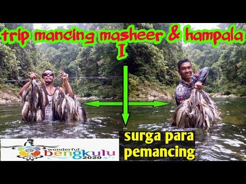 Berburu Ikan Masheer & Hampala