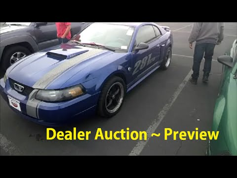 Car Auction Auto Auctions Video Preview Cars Trucks Wholesale Buying Bidding