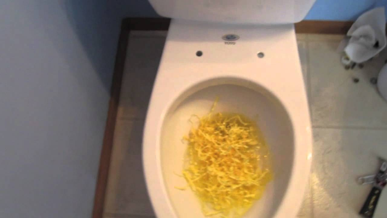 mansfield versus toto drake toilet