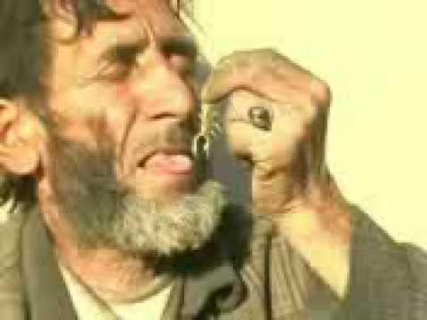 afghani baba,world record  eating scorpion,2011-by saleh khana