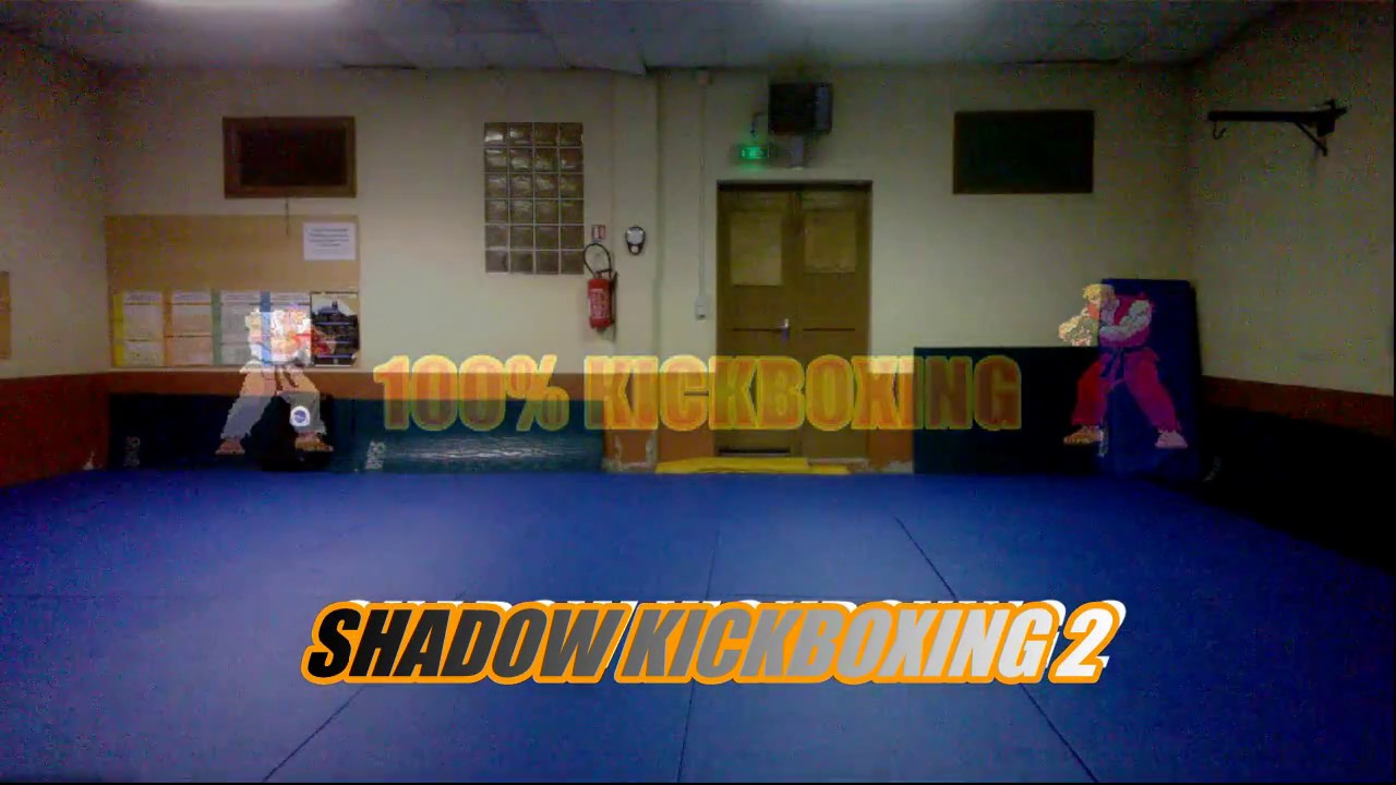 Download Shadow Kickboxing 2