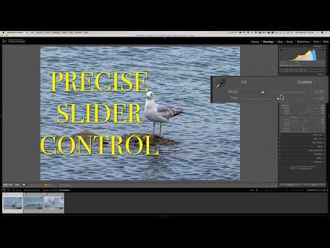 gain-precise-control-over-lightroom-sliders