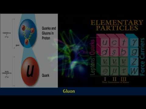 Gluons | Standard Model Of Particle Physics