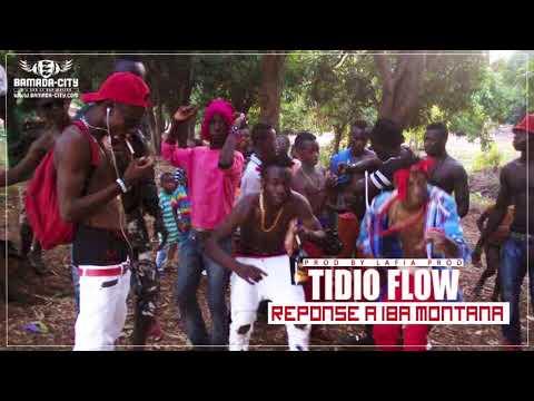 TIDIO FLOW - REPONSE A IBA MONTANA