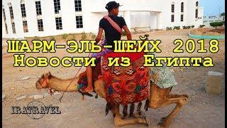 видео Туры в Египет из Москвы, цены 2018, путевки на отдых в Египет все включено от туроператора Coral Travel