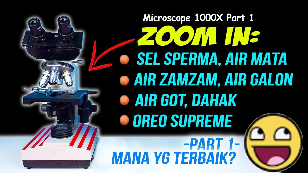 MICROSCOPE: Sperma, Bakteri Baik, Zam Zam, Air Mata, Air Got & Dahak (ZOOM 1000X PART 1)