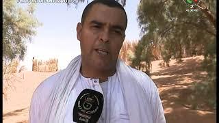 أدرار   الجزائر تحقق الاكتفاء الذاتي من مادة القمح الصلب