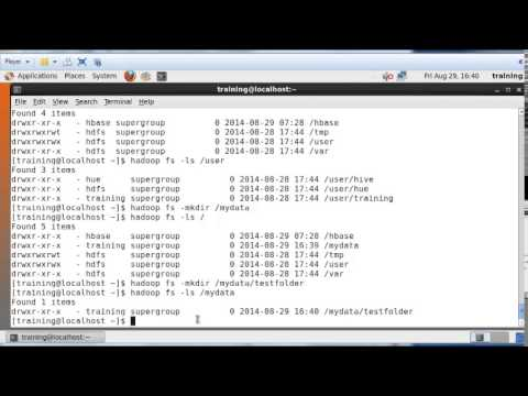 Basics of Hadoop Distributed File System (HDFS)