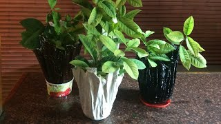 DlY ; Plaster of Paris flower pot from old cloth/Hindi tutorial