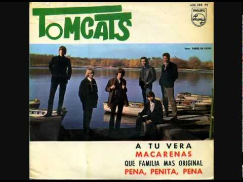 THE TOMCATS -