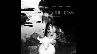 William Patrick Corgan - Cotillions