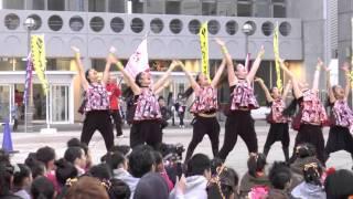 MY matsuri ひたち舞祭 2016SPRING  グランプリ受賞演舞 Spark the ☆Dancers Kuga さん / 東京ラプソディ~オールドファッションラブソング