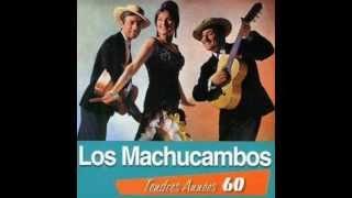 Los Machucambos - Non monsieur (1962)