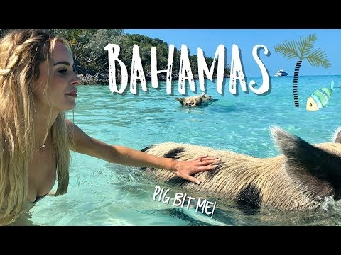 BAHAMAS TRIP  SWIMMING WITH PIGS  TRIPLETS NOW COMING