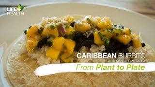 Caribbean Burrito With Mango Lime Salsa