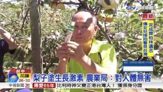 梨子塗生長激素 農業局:對人體無害│中視新聞 20170705