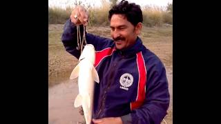 FISHING IN PAKISTAN BY SUPER SPORTS KAHNA NAU LAHORE   phone call