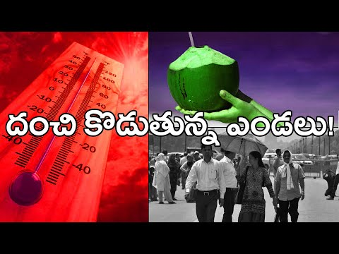 Extreme Heat This Summer Season  దంచి కొడుతున్న ఎండలు... వేసవి మంటలు! | Oneindia Telugu