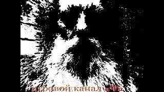 Elder Scrolls V Skyrim 046 - Книги навыков - разные 1