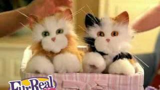 hasbro Fur Real kittens 2008