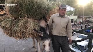 A Look Inside Iran's Cave Village