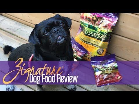 Zignature Dog Food Review: What makes it so unique? #sponsored