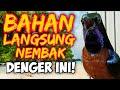 Konin Gacor Tembakan Rapet Full Masteran  Mp3 - Mp4 Download