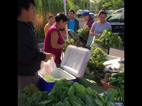 HAPI Fresh Organic Produce at Lakewood Farmers Market (Ohio)