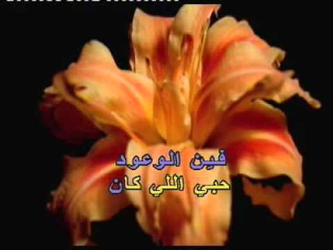 Arabic Karaoke: Georges Wassouf   Tabib Garra7
