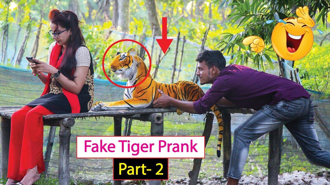 Fake Tiger Prank ! Girl and Fake Tiger ! So Funny in 2020!!Part 2
