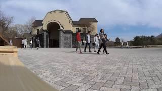 諸橋近代美術館3