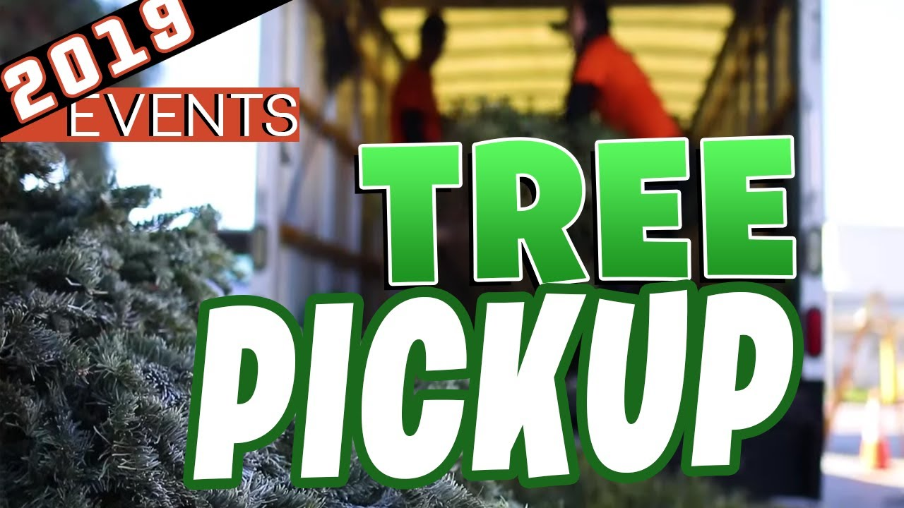 Santee Christmas Tree Pickup 2019 San Diego Real Estate Agent
