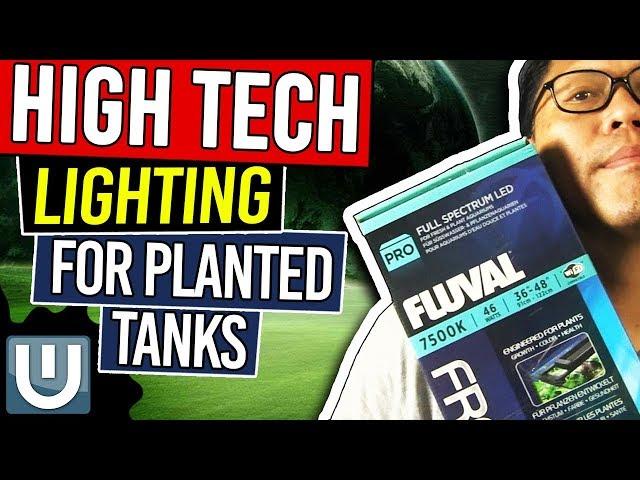 High Tech Aquarium Lighting - Planted Aquarium Lighting Guide – Part 6