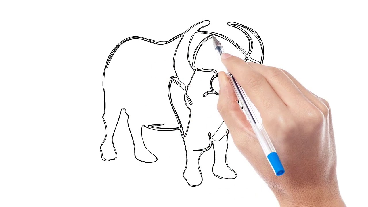 Vẽ con trâu – How to draw a Buffalo