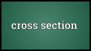 Cross section Meaning