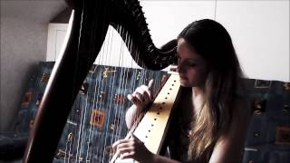 Best Day Of My Life - American Authors (Harp Cover)
