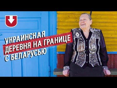 Выборы в Украине,