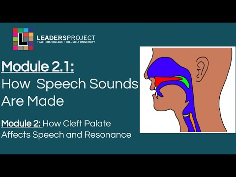 Module 2.1- Cleft Palate Speech and Feeding: How Speech Sounds Are Made