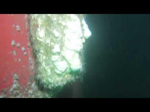 IREKAJAYA: Ship Inspections 02