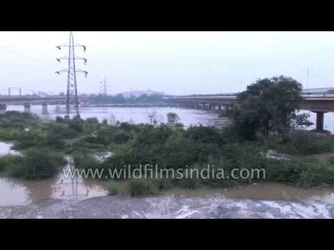 Delhi's Yamuna River floods over and breaches its banks