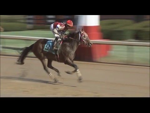 Oaklawn Today for Jan. 23 2016