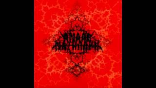 Anaal Nathrakh - Timewave Zero