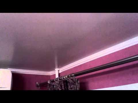 Мышь под потолком