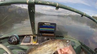 Экспермент - как отображается судак на экране эхолота raymarine dragonfly ? Утопим его и увидим.(как эхолот показывает рыбу, рыба на экране эхолота. Тест эхолота, как работает эхолот, выбор эхолота, рыбалк..., 2016-09-03T17:32:22.000Z)