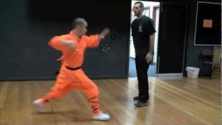 shaolin fighting applications
